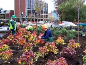 commercial landscaping in Hillsboro Oregon