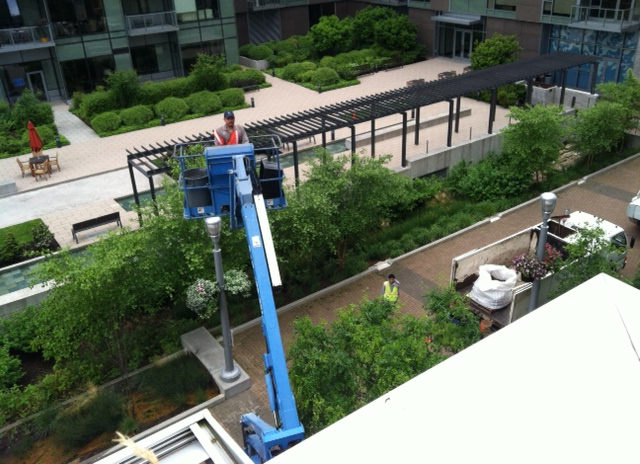Green Roof Work And Pictures Landscaping Portland Oregon