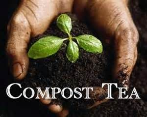 Tea time!  Compost Tea that is!