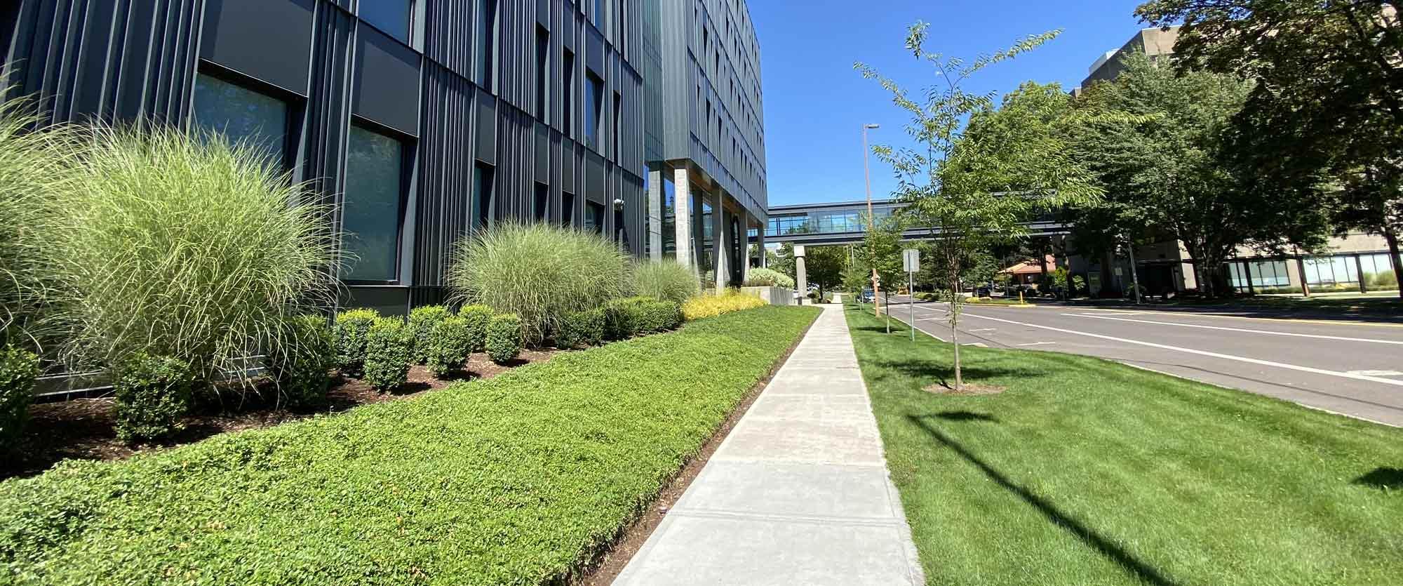 Desantis Commercial Landscaping